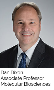 Dan Dixon, Associate Professor, Molecular Biosciences